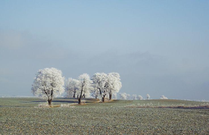 Winter by Mateusz Czyżewski on 500px
