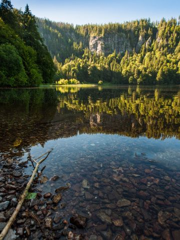 Lake Feldsee is situated in a height of 1111m above sea level - Black Forest - Germany