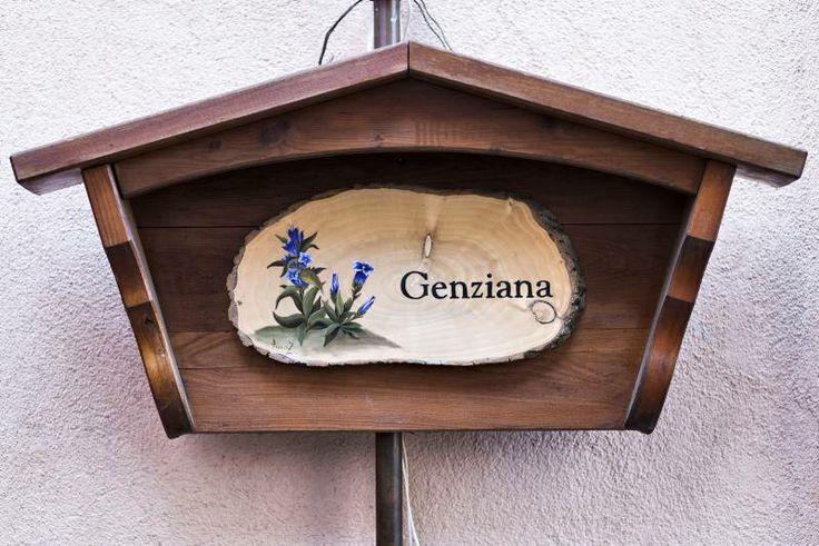 Genziana 2