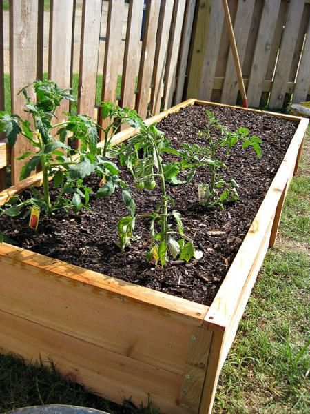 Best 25+ Raised Bed Fencing Ideas On Pinterest | Small Garden Ideas With  Sleepers, Small Garden Raised Beds And Fence Garden