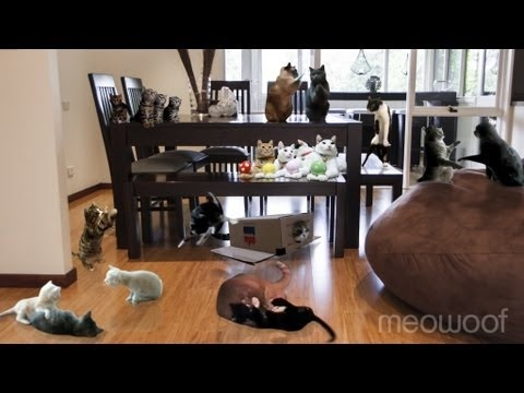 A video of celebricats doing the Harlem Shake in our living room.