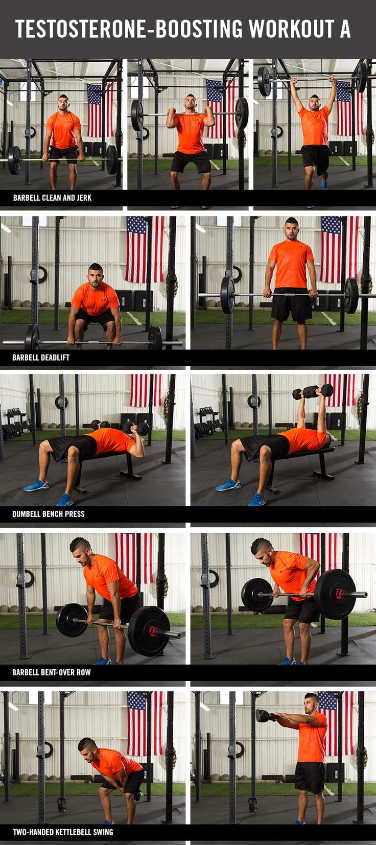 58 best images about ACE Upper Body Exercises on Pinterest ...