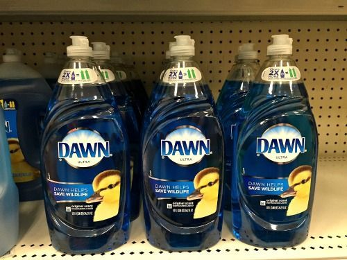 20 Frugal Ways to Use Dawn Dish Soap- Did you know that Dawn can be used for much more than just dishes? Check out these frugal ways to use Dawn dish soap! They can save you a lot of money! | money saving tips, frugal living, money saving ideas, other use