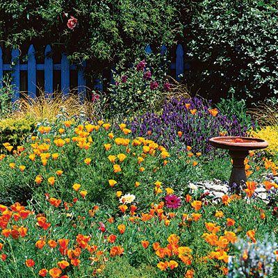 Cottage Garden Design majestic cottage garden design Guide To Cottage Gardening