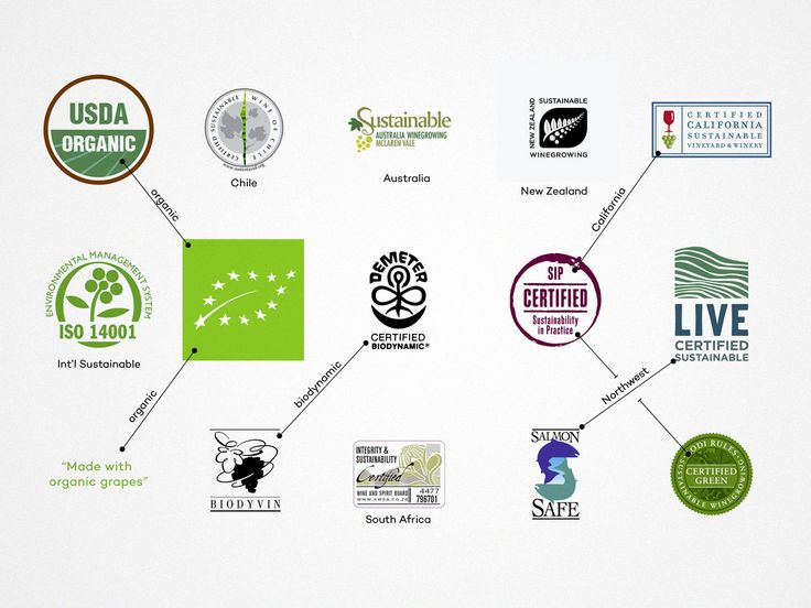 How does one actually support sustainability in wine? Here is a guide explaining the different types of certifications in wine so you can buy wine smarter. #Wine #wineeducation