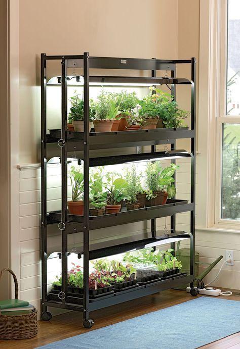 Grow Light Stand: 3-Tier SunLite Garden & T-5 Bulbs   Gardeners.com