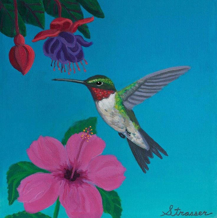 Hummingbird and flowers | Canvas Painting Ideas ...
