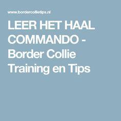LEER HET HAAL COMMANDO - Border Collie Training en Tips