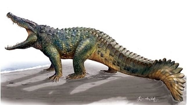 Descubren una nueva especie de cocodrilo que convivió con los últimos dinosaurios, tan robusto y fuerte como el superhéroe de Marvel  Comentario de Aprocean:  La Paleontología siempre nos depara estupendas sorpresas, debía ser impresionante  verlo actuar por el Cretácico.