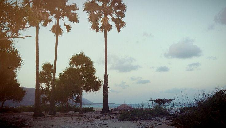 a beach in tanah timor