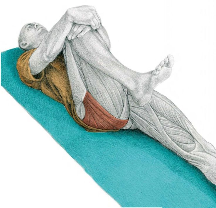35. Hip Flexion Lying Down