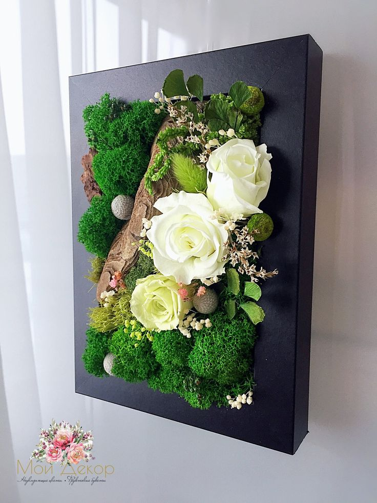 Зелёная картина из стабилизированного мха и розами 🌹🍀🌿