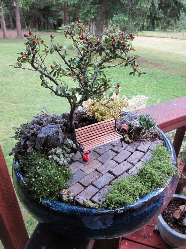 """A már régóta nevelgetett bonsai fácskánkat látványát is feldobhatjuk, ha átültetjük egy nagyobb edénybe, és köré építünk egy kis pihenőhelyet, a """"röpködésben megfáradt tündéreknek""""."""