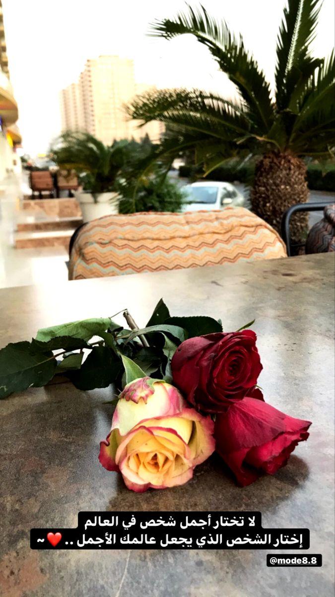الحب و الورد Beautiful Photography Nature Birthday Cake Gif Islamic Love Quotes