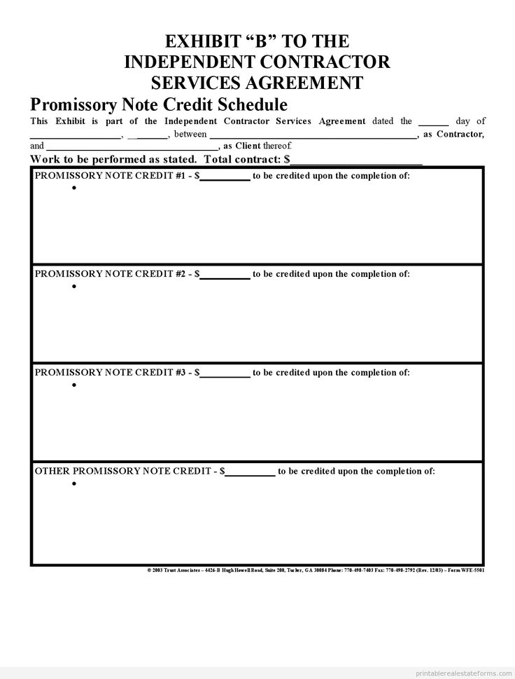 Printable Sample Promissory Note Credit Scedule 2 Form  Free Printable Promissory Note Template
