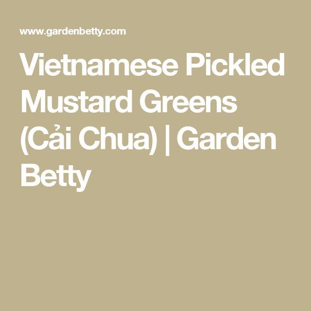 Vietnamese Pickled Mustard Greens (Cải Chua) | Garden Betty