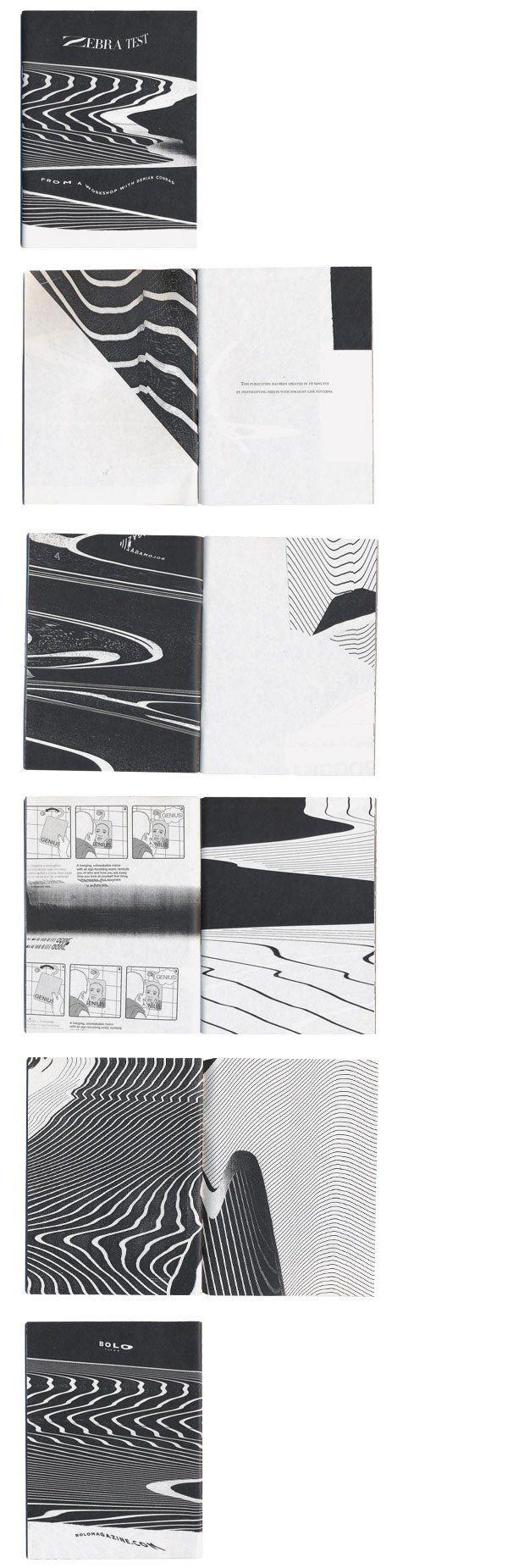 Zebra Test | BOLOBOLO