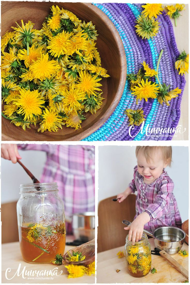 Today, together with the May fairies Eve and Anya we prepare dandelions jam! http://www.minchanka.by/main_sections/deserty/2284/  #jam #dandelions #dandelionsjam #dessert #masterclass #freetutorial #kitchen #cookery #cooking #recipe #minchanka