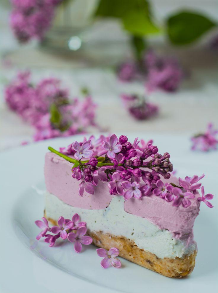 wiosenny sernik z kwiatów bzu i malin.
