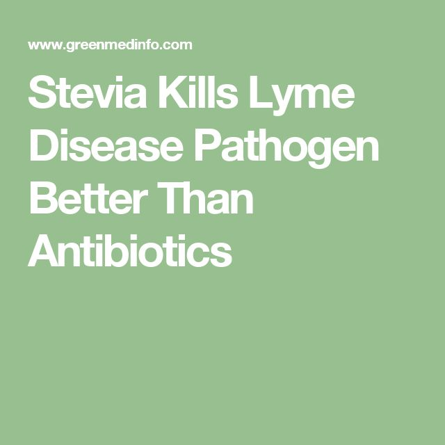 Stevia Kills Lyme Disease Pathogen Better Than Antibiotics