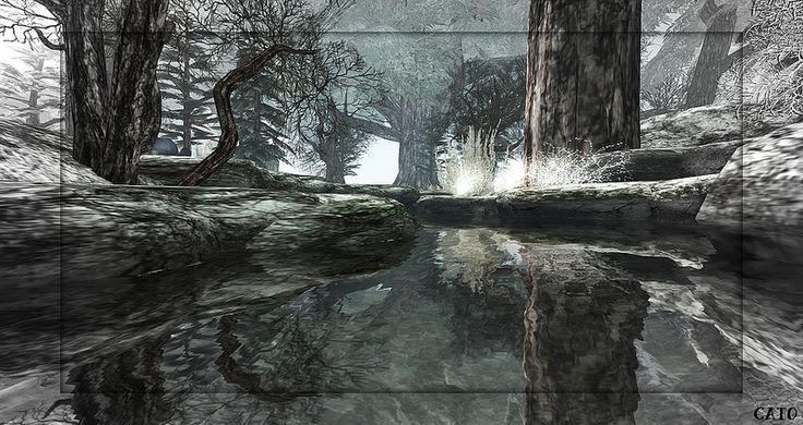 Evensong Woods - IV