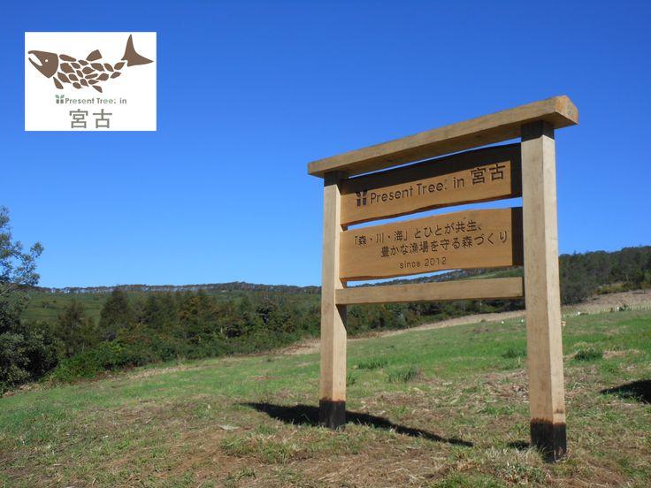 ≪Present Tree in 宮古≫ 第1回植樹イベント 2012年10月8日(日)、澄みきった晴天のもと、第1回目の植樹イベントを開催しました。参加者は宮古市民、首都圏をはじめとする市外からの一般市民、そしてプレゼントツリー支援企業関係者など総勢約120名。 10班に分かれて、オオヤマザクラ、イタヤカエデなど6種類の広葉樹計1,000本の苗木を植えました。お昼には、地元産のキノコがたっぷり入ったキノコ汁を青空の下でいただき、その後はガイド付きの森林散策に出かけました。市民参加者と市外からの参加者が直接触れあい、和気靄靄とした楽しいイベントとなりました。