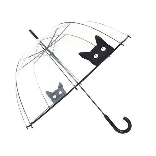 Parapluie transparent avec un chat