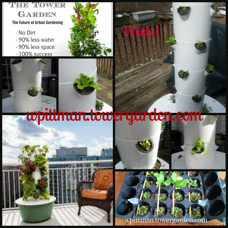 Grow Your Own From Porch Balcony Roof Top More Tower Garden