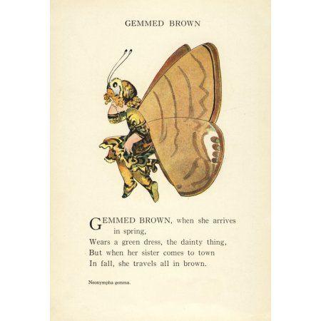 Butterfly Babies 1914 Gemmed Brown Canvas Art - MT Ross (18 x 24)