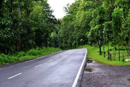Simon Anon Satria: Suasana pagi hari sehabis hujan di tengah hutan Baluran.  Lokasi : Baluran - Situbondo - Jawa Timur.