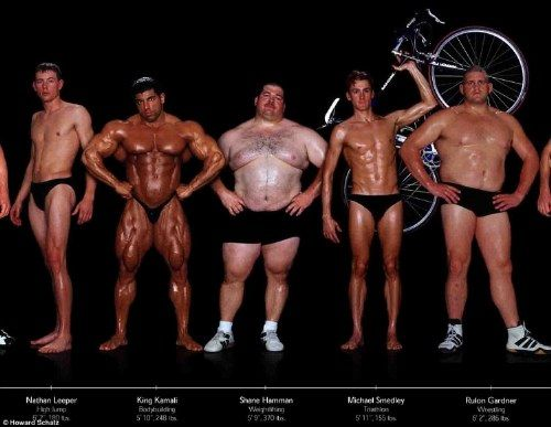 "Bodies of various athletes. ""Athletic build"" varies so much depending on the sport. :)"