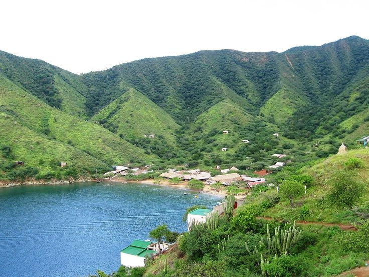 Conexión con la naturaleza en Taganga - http://www.absolutcaribe.com/conexion-con-la-naturaleza-en-taganga/
