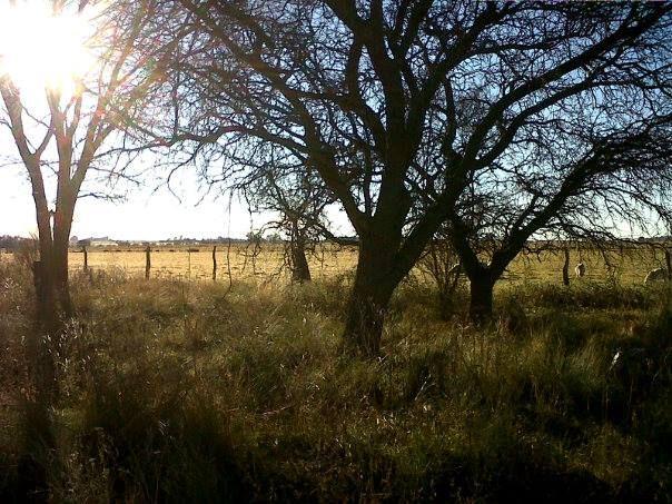 'La Deolinda', perteneciente a la familia Lovera, se suma a la propuesta de turismo rural