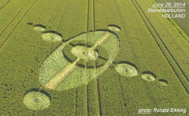 Crop Circle at Standdaarbuiten (2), Holland. Reported 26th June. 2014