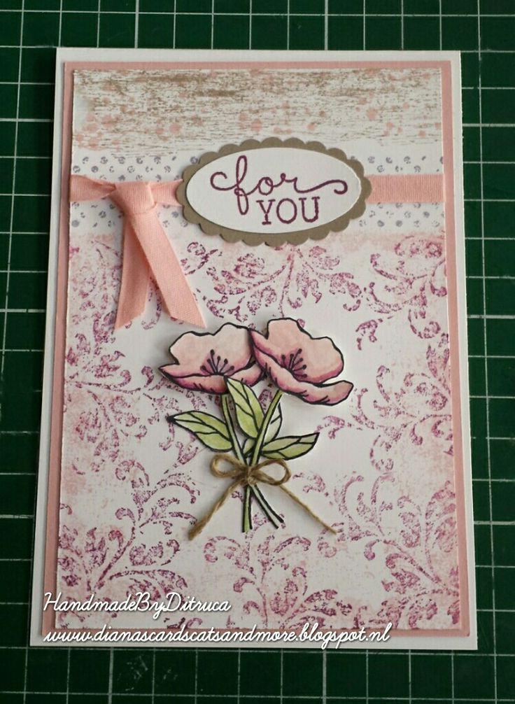 Stampin Up Diana´s Cards, Cats and More, Bestellen Stampin' Up Producten - SU - Birthday Blooms, Timeless Textures