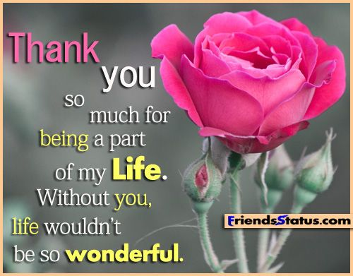 Thank You For Being My Sister Quotes: 1000+ Thank You Friend Quotes On Pinterest
