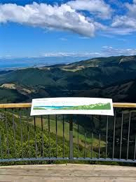 Image result for hawkes lookout