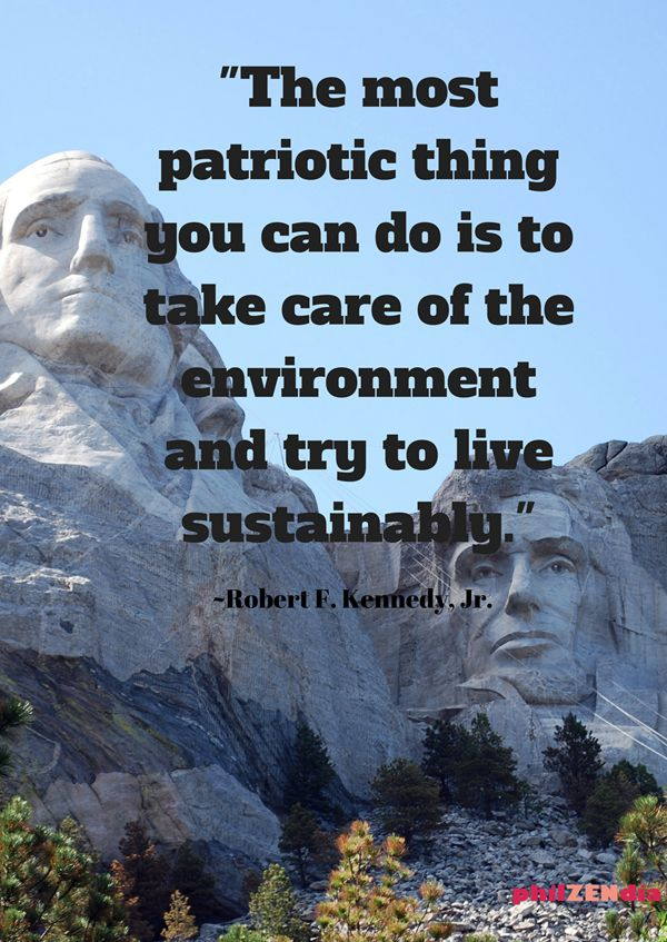 -the most patriotic thing you can do is take care of the environment and try to live sustainably - Quotes for Earth Day