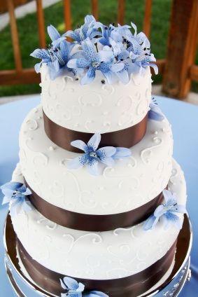 Aqua Blue and Chocolate Brown Wedding Theme Cake and Cupcakes