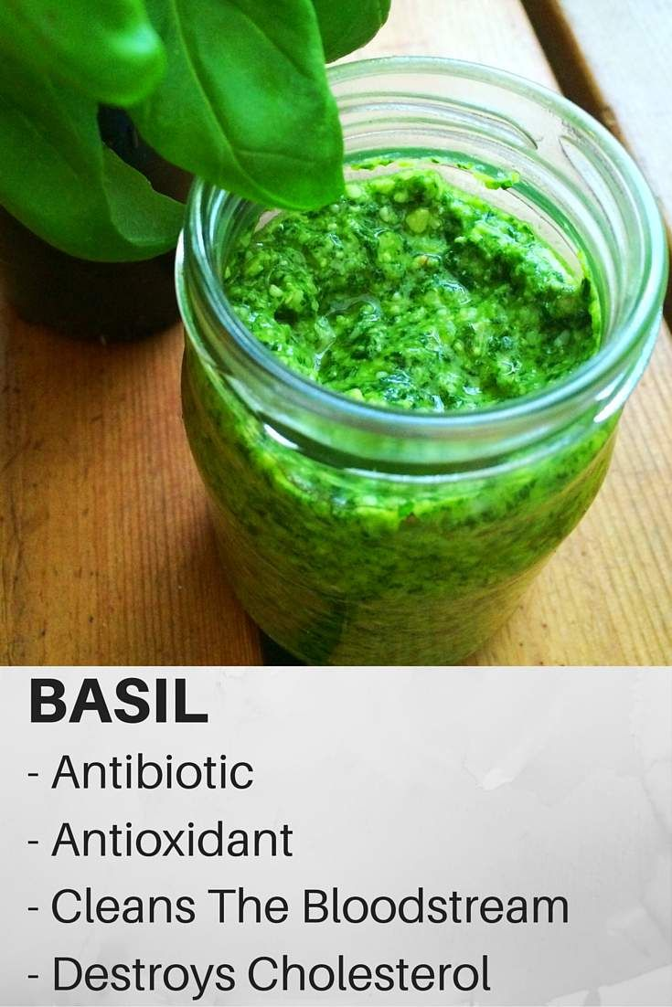 Basil has powerful antioxidant properties which promote a healthy diet and lifestyle, as they protection from free radicals damage, cancer, and prevent aging.