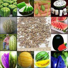 50 unids/bolsa 12 tipos raros chinos sandía semillas para elegir deliciosa fruta semillas de melón de agua enredadera planta de los Bonsai(China (Mainland))