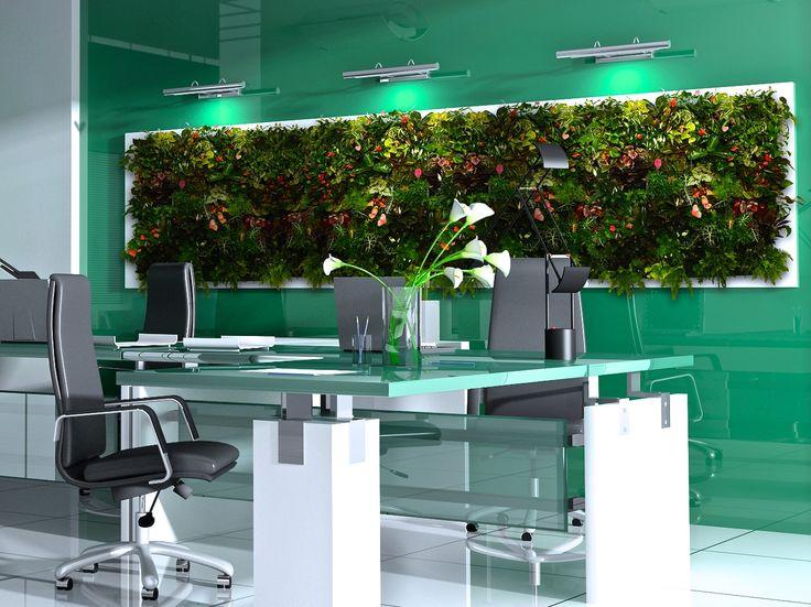 Фитостены Flowall  #verticalgarden #greenwall #livingwall #Green #Wall #фитокартины #Flowall