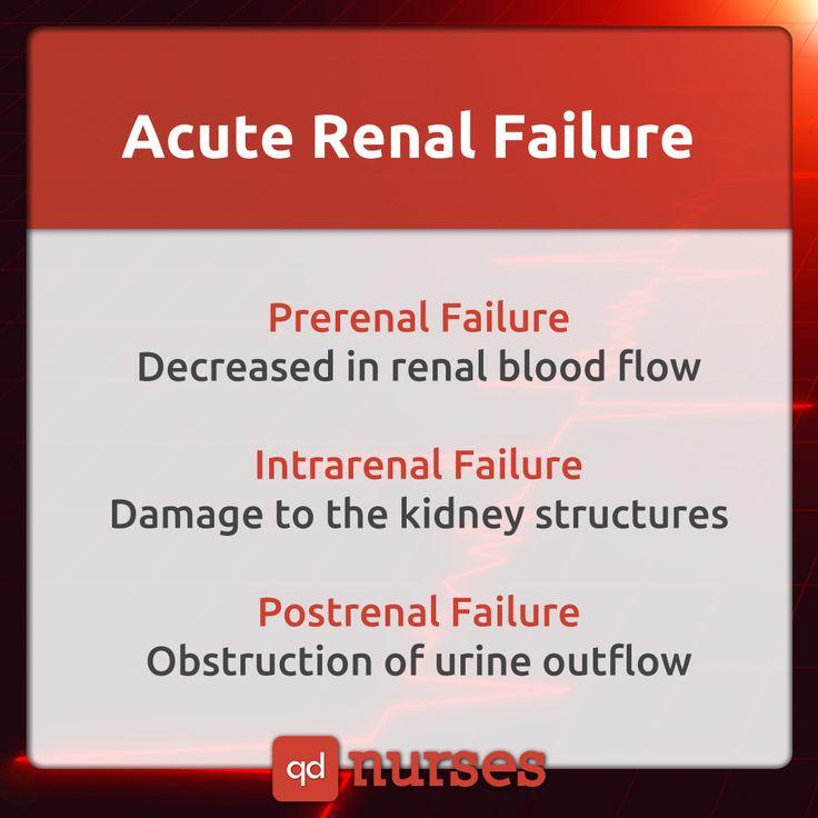 Acute Renal Failure, simplified! pin now, study later! #nursing #nurse #rn #nursingstudent #nclex #mnemonic #meme