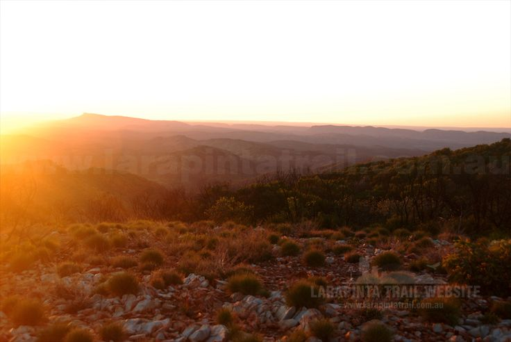 Larapinta Trail: Section 3 : Alternate High Route