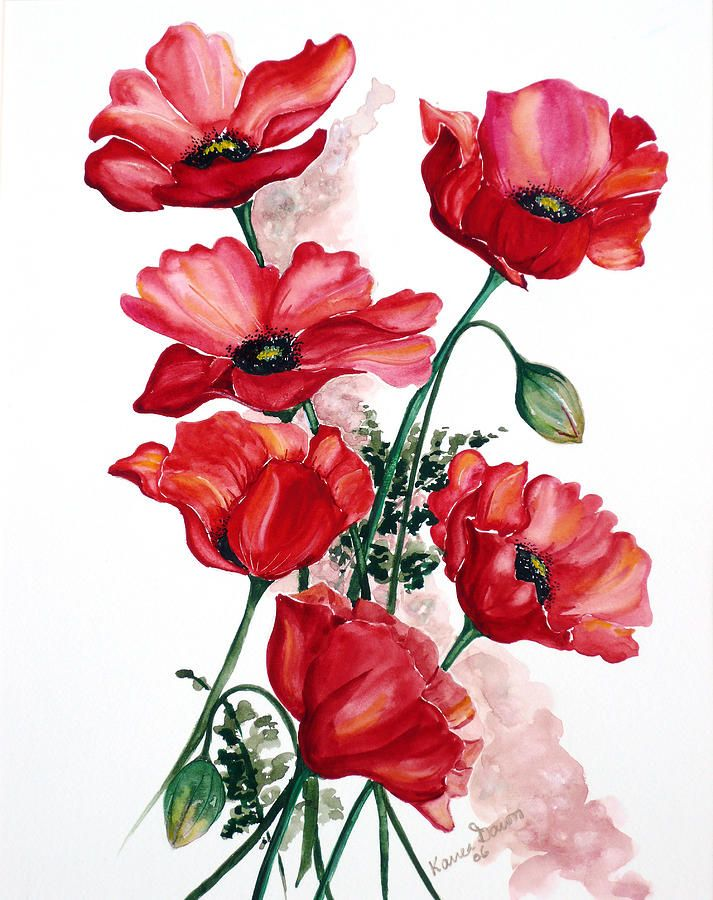 English Field Poppies. Painting by Karin Best - English Field Poppies. Fine Art Prints and Posters for Sale
