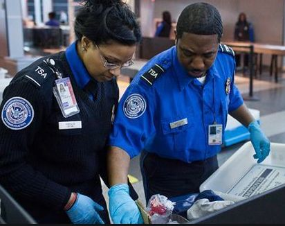 11 best TSA images on Pinterest Airports, Air travel and Airport - tso security officer sample resume