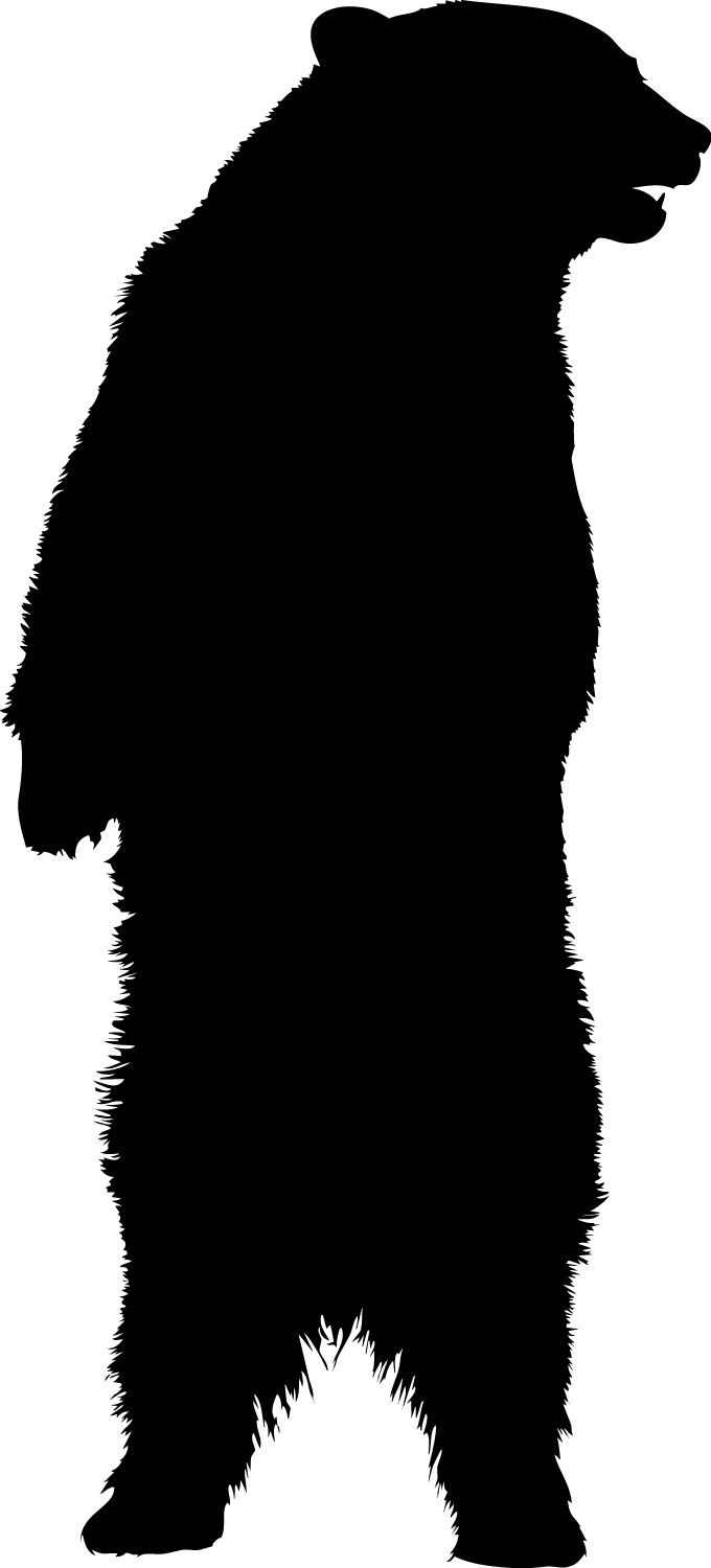 the  best bear silhouette ideas on pinterest  poster design  - standing bear vinyl decal