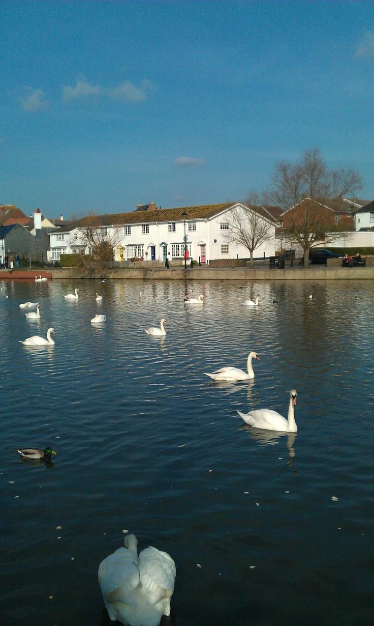 Emsworth Mill Pond