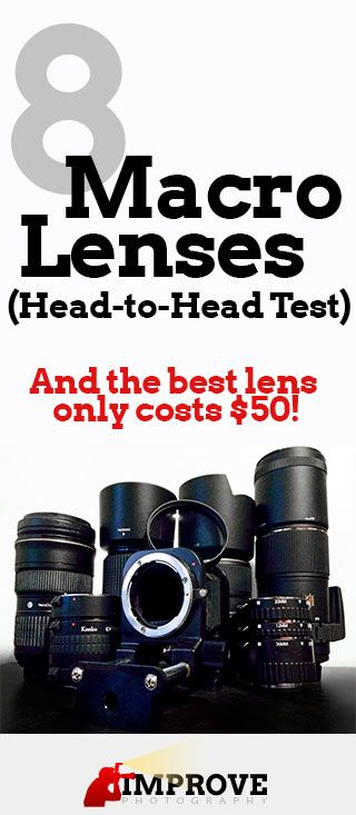 Best Macro Lenses: Unbiased Review of 8 Lenses, and it turns out that one of the cheapest options is actually one of the best quality!