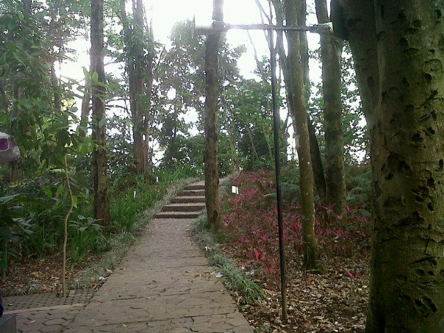 Taman Hutan Raya Ir. H. Djuanda di Bandung, Jawa Barat